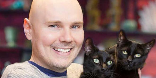 Котките на Били Коргън вече имат туитър акаунт