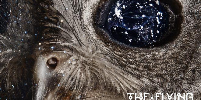 tfd-eyes-in-the-stars
