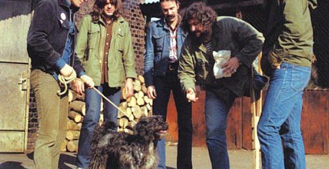 Плешивото куче или рокендролът зад Желязната завеса