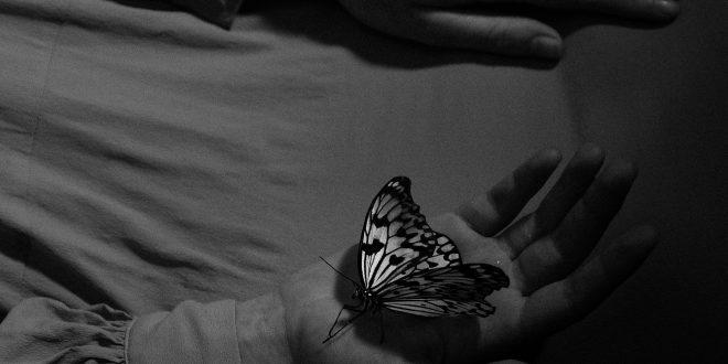 Air From My Lungs е първият сингъл от новия албум на Leaver